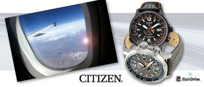 Citizen Promaster - SKY
